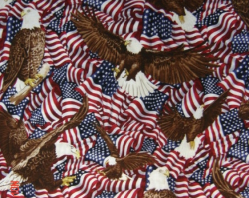 Eagles and Flags