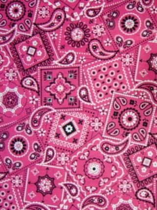 Pink Bandana (NEW)