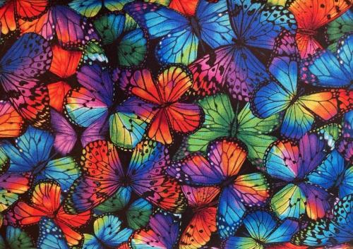 Rainbow Butterflies (NEW)